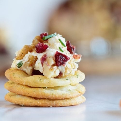 dipping sauce vegan cream cheese dairy free gluten free vegetarian healthy appetizers holiday cranberry walnut chives