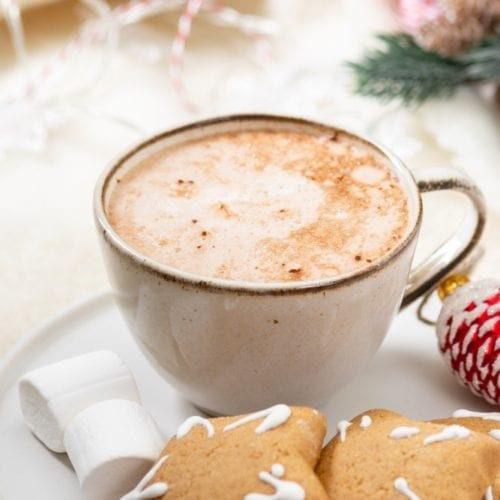 latte vegan healthy soy milk oat almond cashew gingerbread holiday christmas