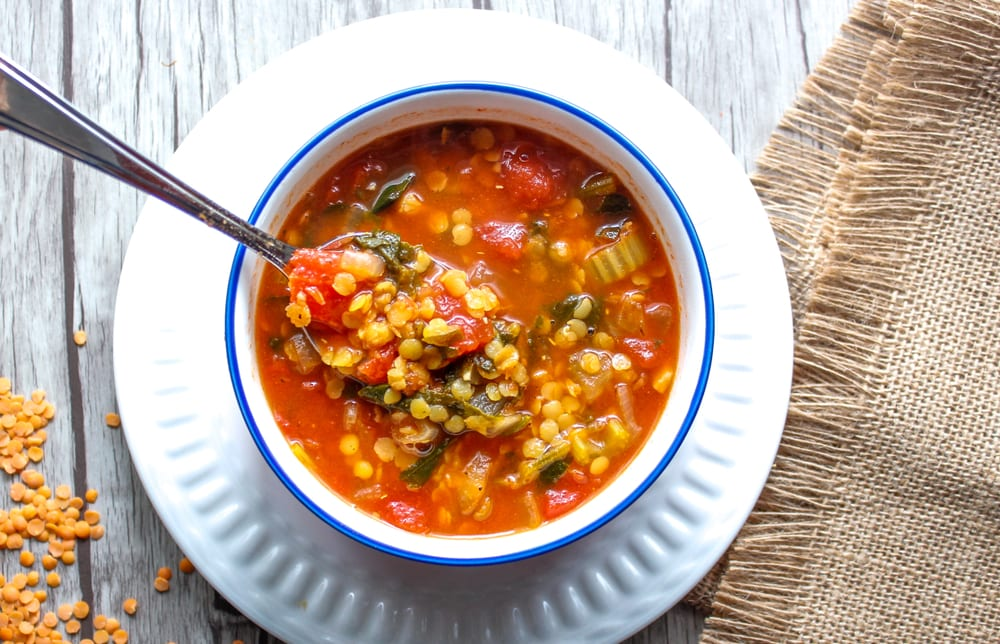 Panera 10 Vegetable Soup Recipe